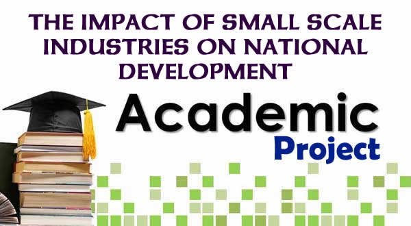 THE IMPACT OF SMALL SCALE INDUSTRIES ON NATIONAL DEVELOPMENT image
